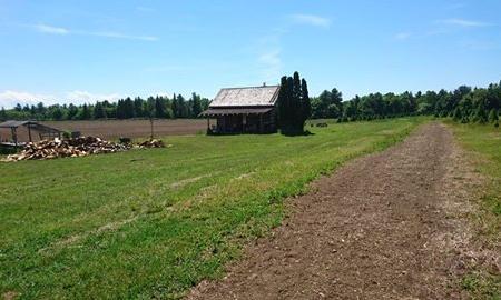 Mockingbird Hill Farm Image