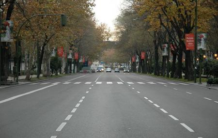 Paseo Del Prado Image