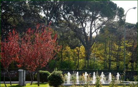 Parque El Capricho Image