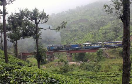 Nilgiri Mountain Railway Image