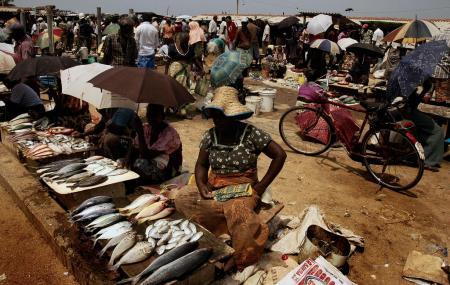 Main Fish Market Image