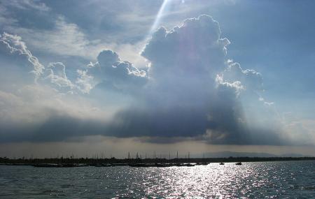 Pulicat Lake Image