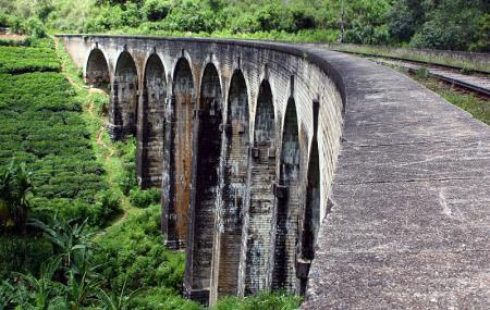 Demodara Nine Arch Bridge Image