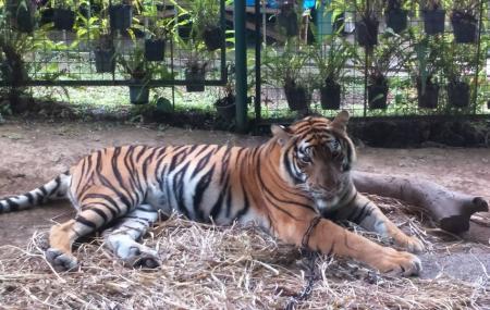 Residence Inn Zoo Image