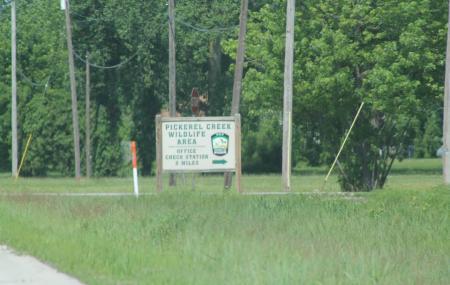 Pickerel Creek Wildlife Area Image