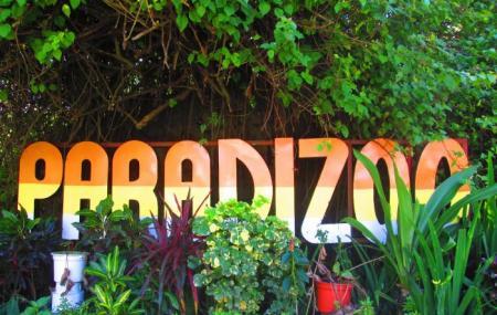 Paradizoo Image