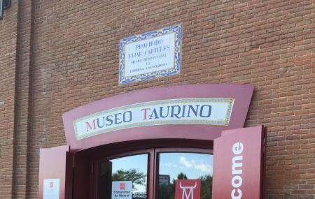 Bullfighting Museum Image