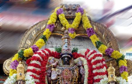Sri Parthasarathy Swamy Temple Image