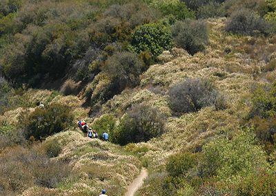 Backbone Trail Image