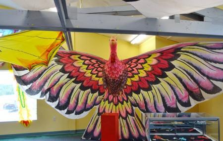 Kite Museum Image