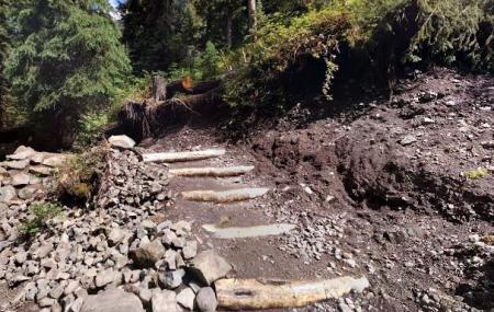 Grotto Falls Trail Image