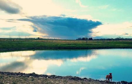 Gallatin County Regional Park Image