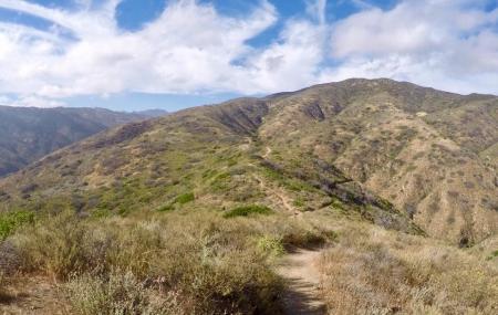Nicholas Flat Trail Image