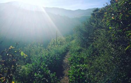 Sostomo Trail Image