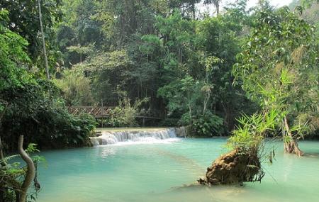 Kuang Si Falls Image