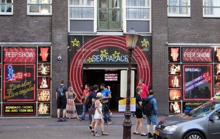Online live sex amsterdam show
