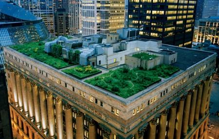 City Hall's Rooftop Garden Image