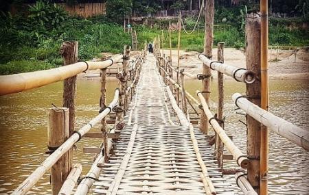 Bamboo Bridge Image