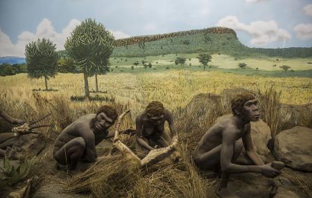 Kariandusi Museum Image