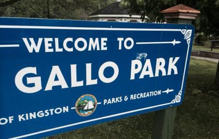 Pacifico-gallo Park Image
