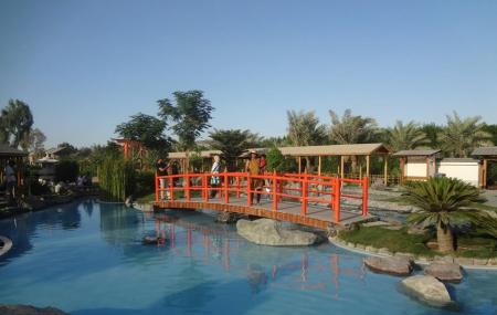 Arman Zoo Image