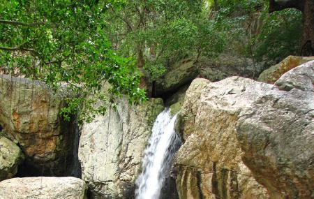 Ubbalamadugu Falls Image