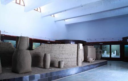 Saputara Tribal Museum Image