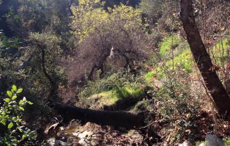 Wilderness Glen Park Image