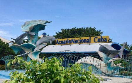 Acuario Nacional De Cuba Image