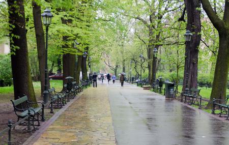 Planty Park Image