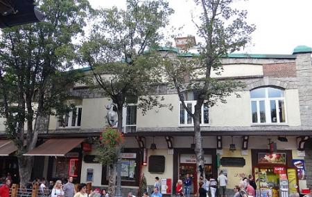Krupowki Street Image