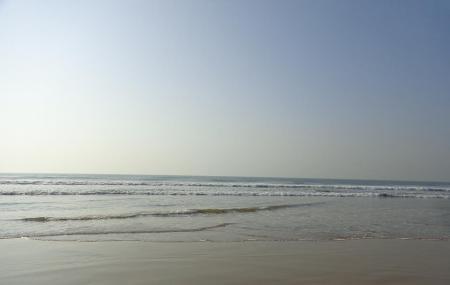 Swargadwar Beach Image
