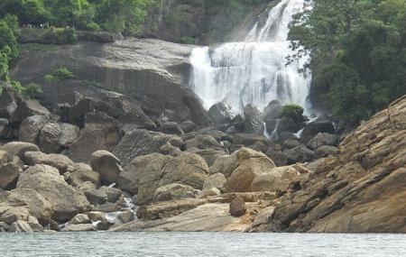 Agasthiyar Falls Image