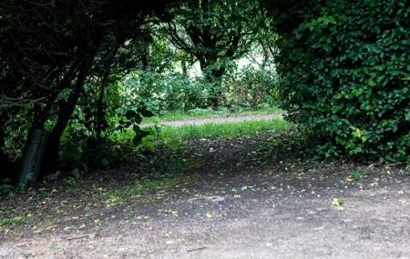 Radwell Meadows Country Park Image