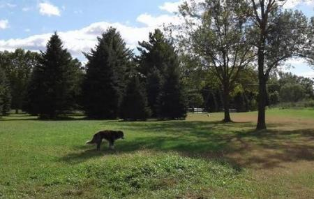 Environmental Nature Area Off-leash Dog Park Image