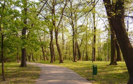Park Bednarskiego Image