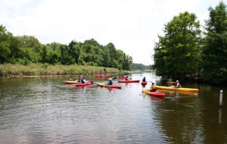 Black Bayou Lake National Wildlife Refuge Image