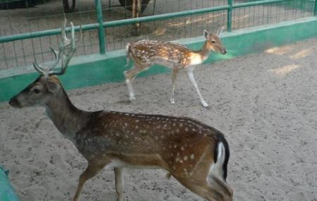 An Naman Zoo Image