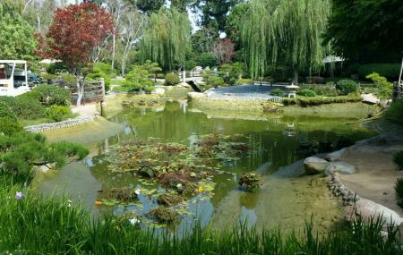 Earl Burns Miller Japanese Garden Image