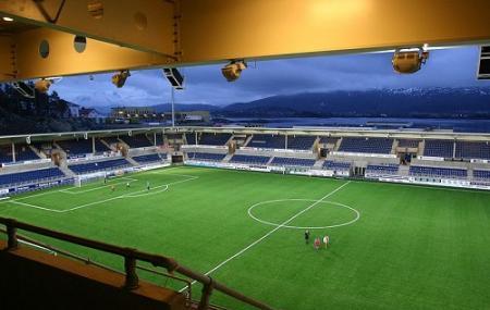 Color Line Stadium Image