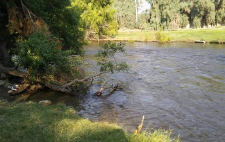 Kern River County Park Image