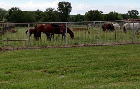 Flint Hills Rodeo Grounds Image