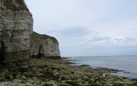 Flamborough Headland Heritage Coast Image