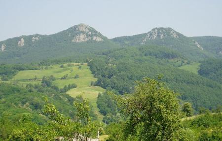 Kozara National Park Image