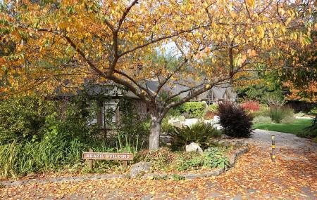 Tilden Nature Area Image