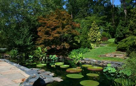 Sarah P. Duke Gardens Image
