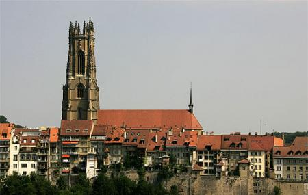Fribourg Cathedral Image