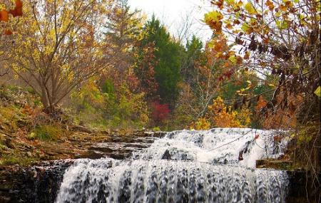 Tanyard Creek Nature Trail Image