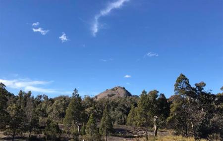 Girraween National Park Image