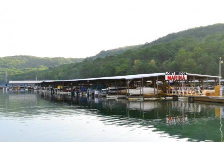 Lost Bridge Marina-day Rentals Image